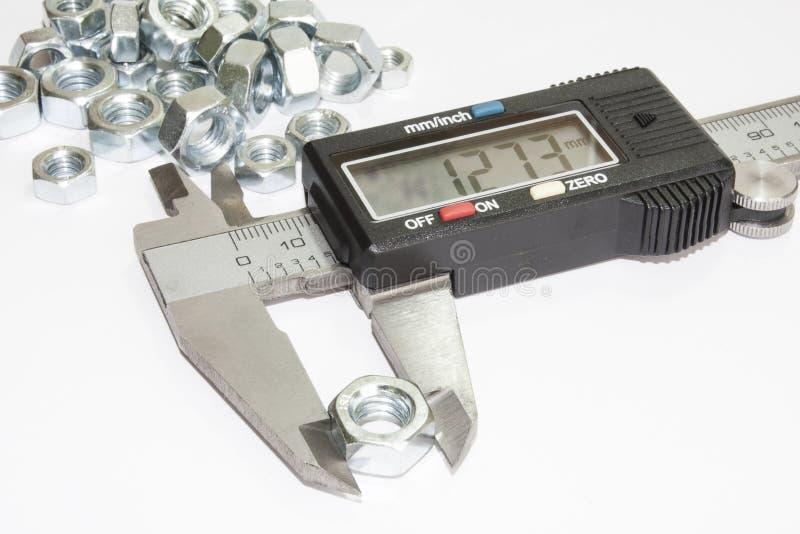 Nuez en los mandíbulas digitales del calibrador imágenes de archivo libres de regalías