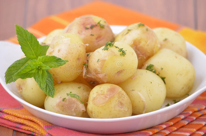 Download Nugget potatoes with mint stock photo. Image of healthy - 25796714