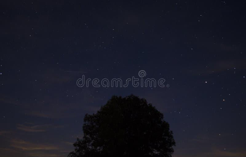 Nuit étoilée 2 images libres de droits
