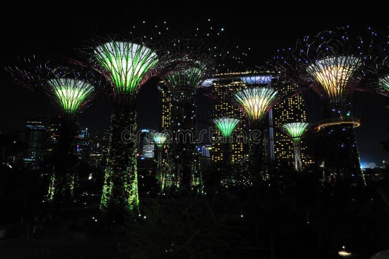 Nuit aux jardins par le compartiment photo libre de droits