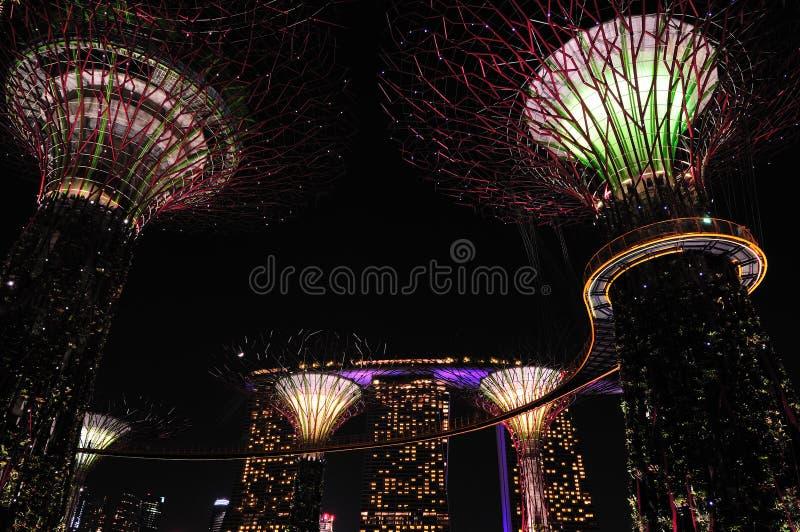 Nuit aux jardins par le compartiment photos libres de droits