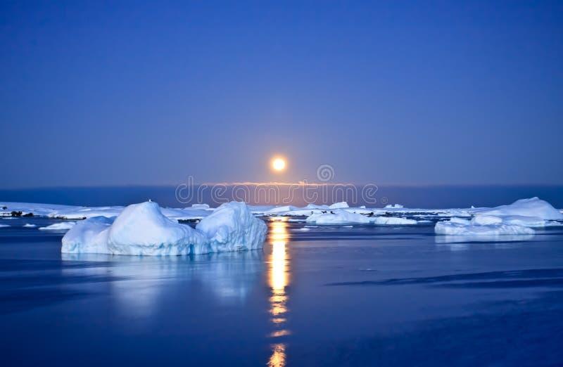 Nuit d'été en Antarctique photos libres de droits