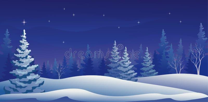 Nuit d'hiver panoramique illustration stock