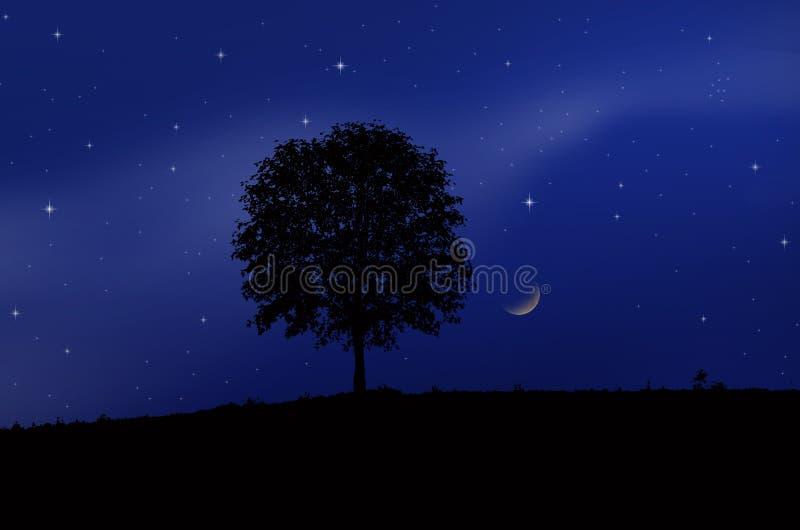 Nuit de affaiblissement de lune et d'étoiles photographie stock