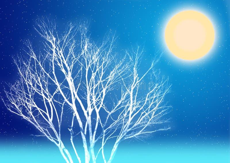 Nuit de clair de lune de l'hiver illustration stock
