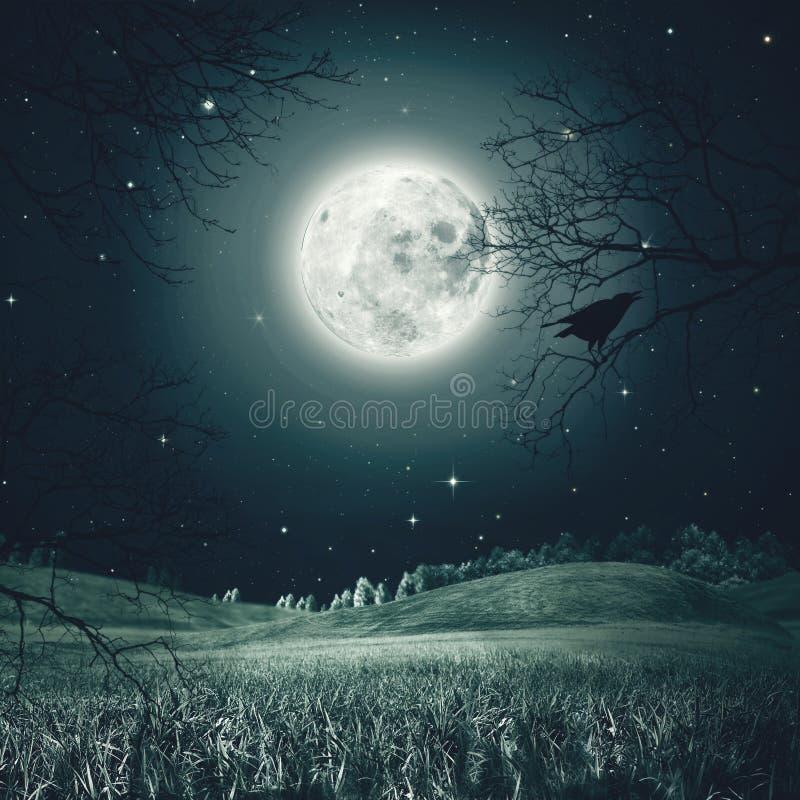 Nuit de Halloween sur le pré fantasmagorique illustration stock