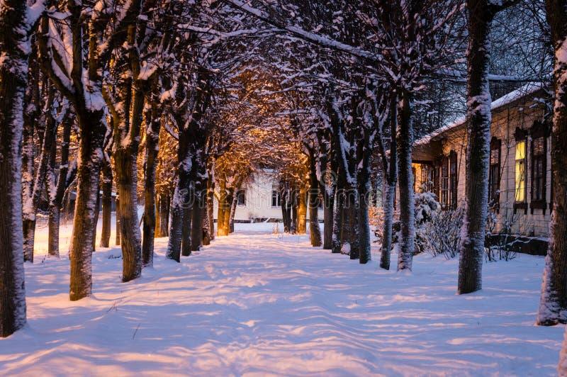 Nuit de l'hiver image libre de droits