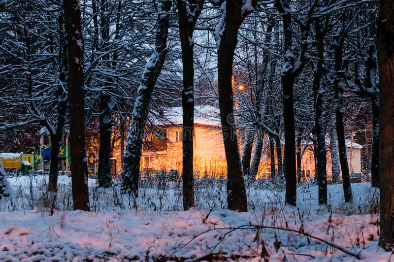 Nuit de l'hiver images stock