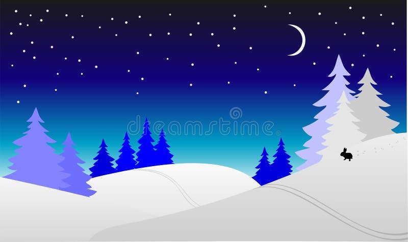 Nuit de l'hiver photo stock