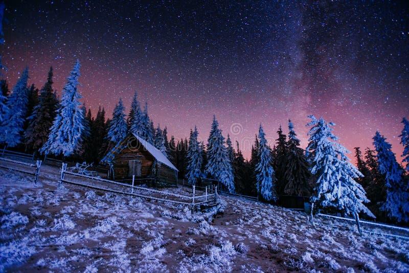 Nuit de magie de Noël image libre de droits