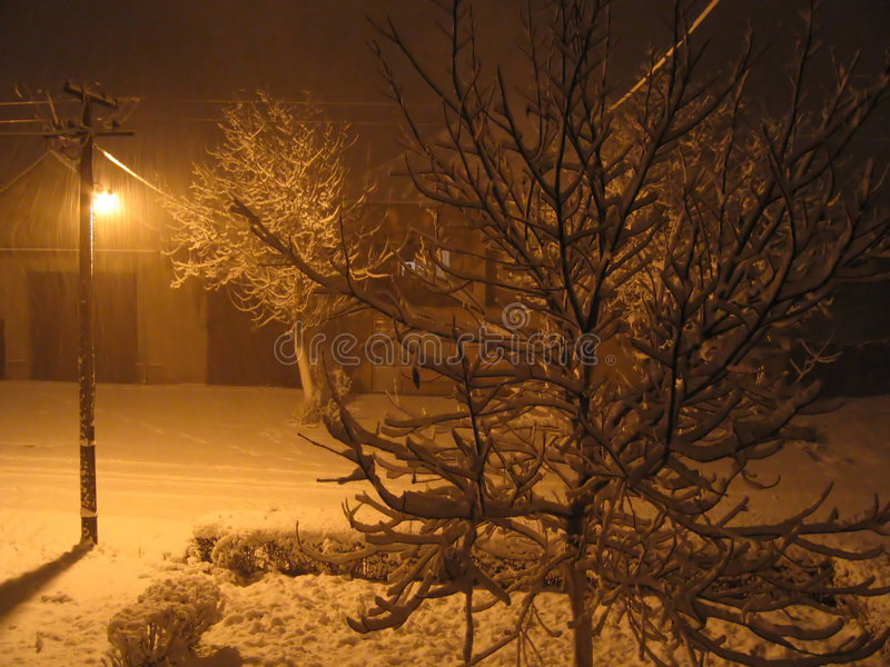 Nuit de neige image stock