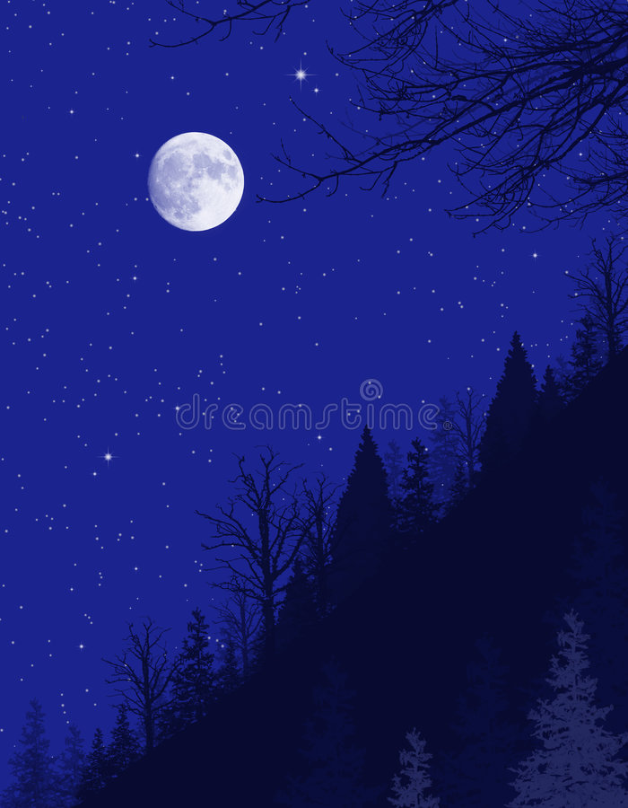 Nuit foncée de l'hiver illustration de vecteur