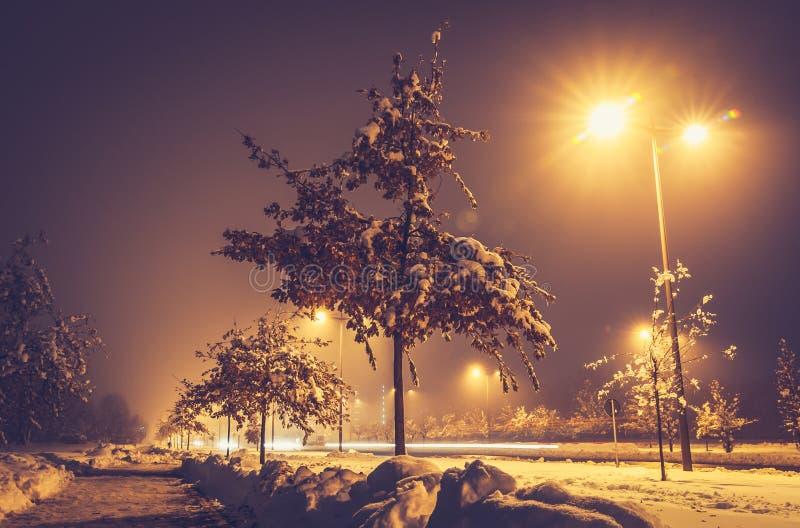 Nuit froide d'hiver avec la neige sur l'arbre et terre avec le réverbère et point de vue de sembler déprimé le bas photographie stock libre de droits