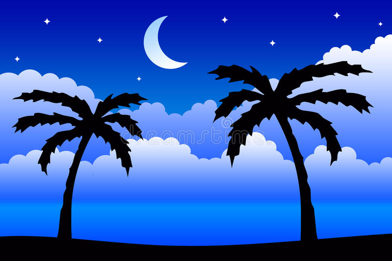 Nuit tropicale illustration libre de droits