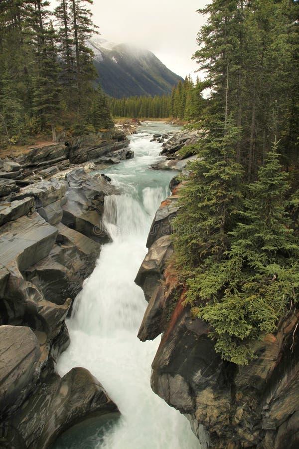 Numa Creek Falls, Alberta, Kanada lizenzfreie stockfotos