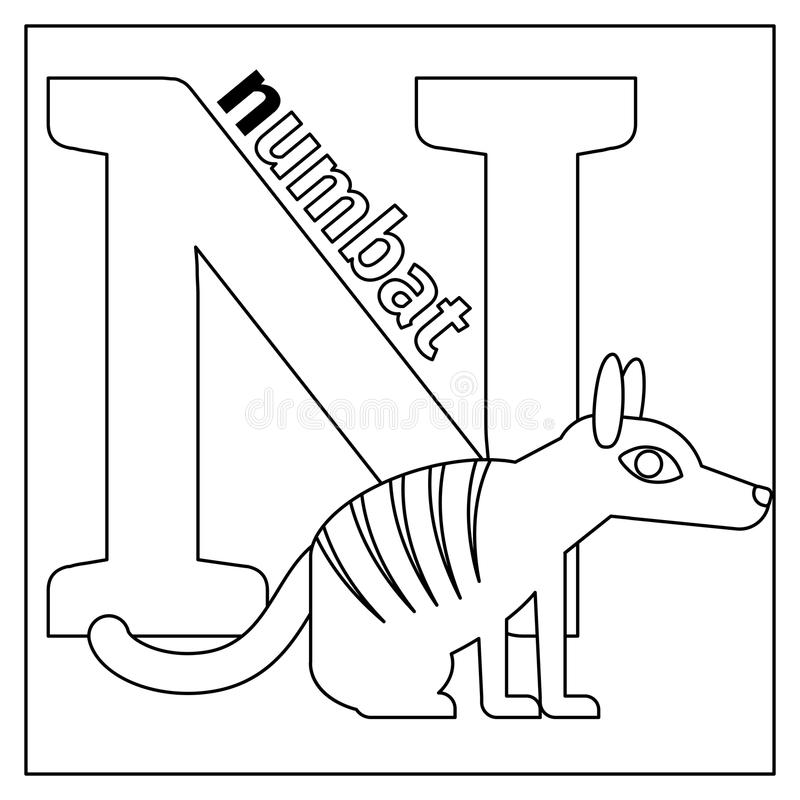 Numbat Letter N Coloring Page Stock Vector Image 79427656