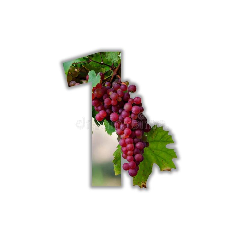 Free Number 1 Made Of Real Grapes Royalty Free Stock Photos - 135791688