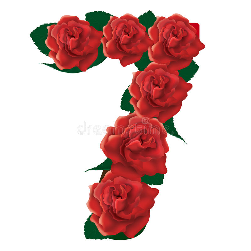 Number 7 Cute Roses Floral Illustration Stock Image