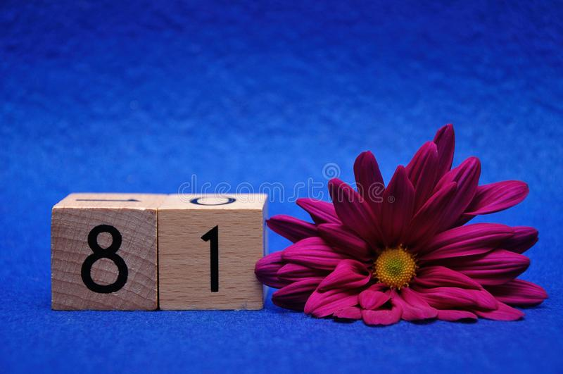 Number eighty one with a purple daisy. On a blue background royalty free stock images