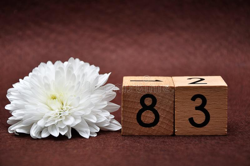 Number eighty three with a white aster. On a brown background stock photos