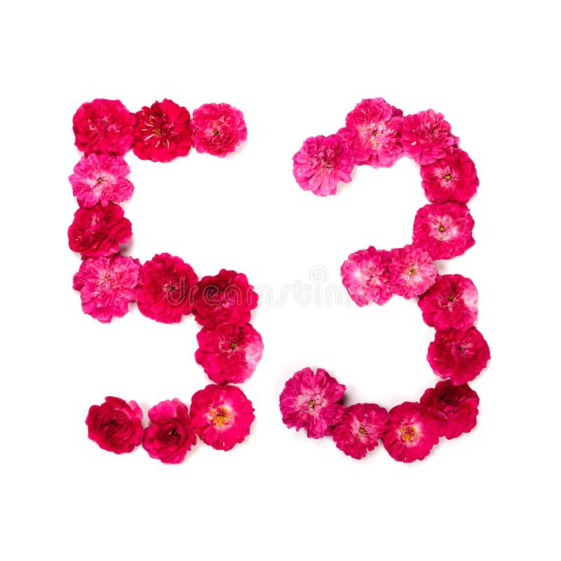 Number 96 From Flowers Of A Red And Pink Rose On A White