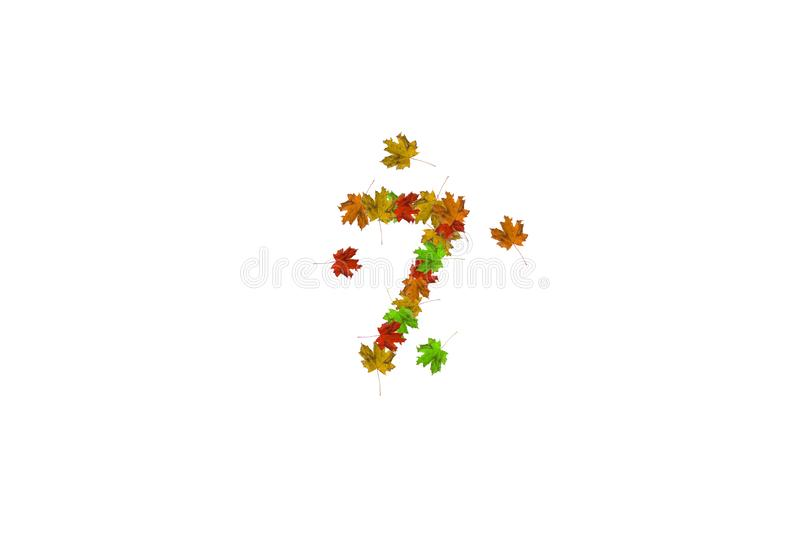 Number seven made with autumn leaves isolated on white. Fall concept. Organic digits from 0 to 9 royalty free stock images