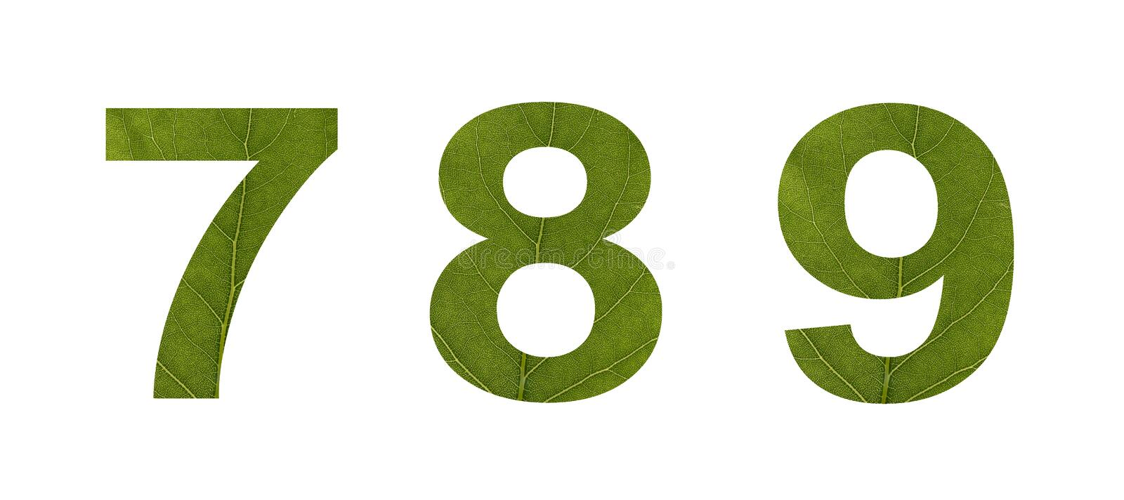 Numbers from green leaves on a white isolated background. Macro shooting. Concept: ecology stock photo