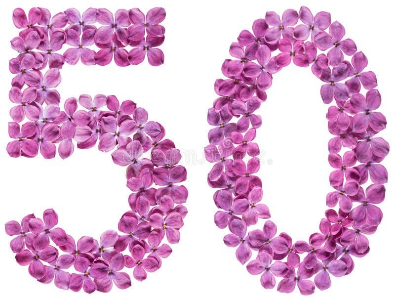 Numeral árabe 50, cinqüênta, das flores do lilás, isoladas no whi fotos de stock royalty free