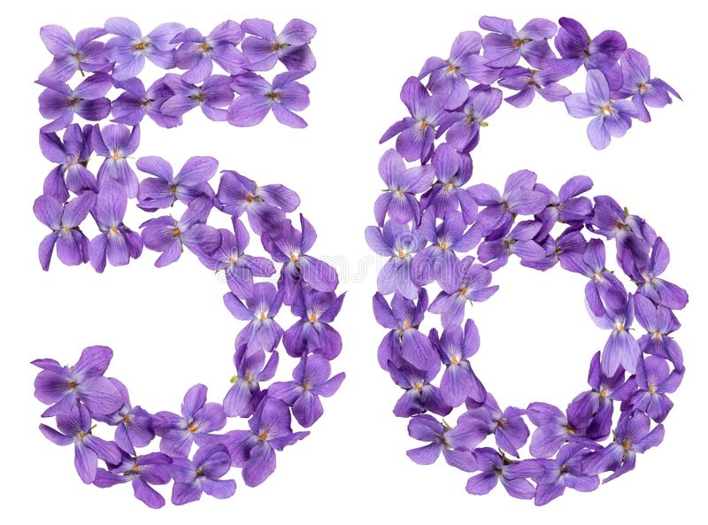 Numeral árabe 56, cinquenta e seis, das flores da viola, isoladas sobre imagem de stock royalty free