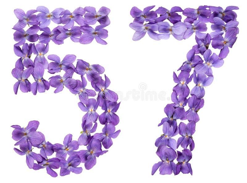 Numeral árabe 57, cinquenta e sete, das flores da viola, isoladas imagens de stock royalty free