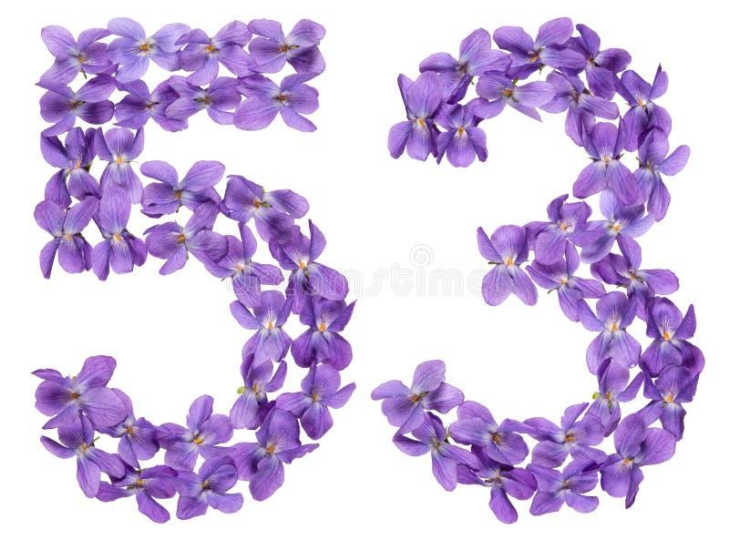 Numeral árabe 53, cinquenta e três, das flores da viola, isoladas imagens de stock royalty free