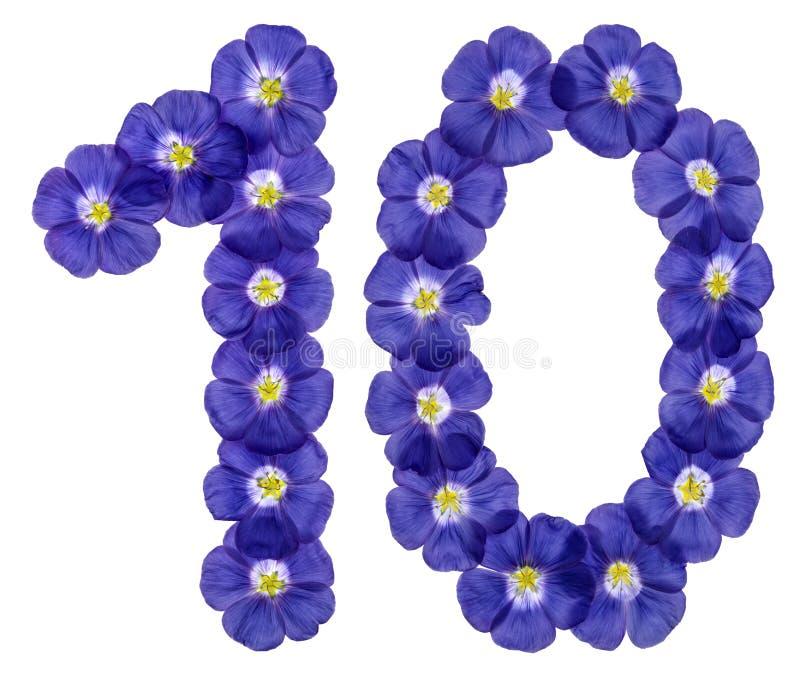 Numeral árabe 10, dez, das flores azuis do linho, isoladas em w foto de stock
