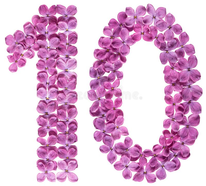 Numeral árabe 10, dez, das flores do lilás, isoladas no branco imagens de stock