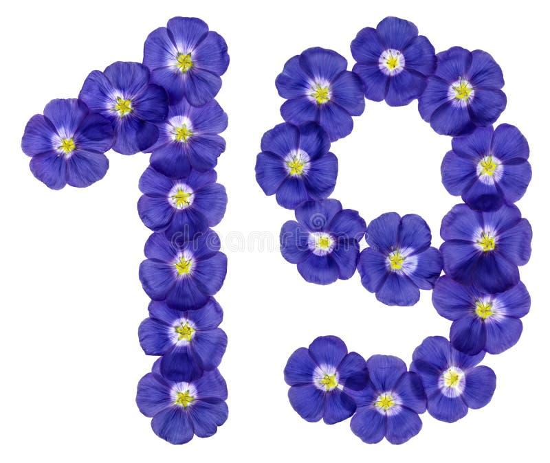 Numeral árabe 19, dezenove, das flores azuis do linho, isoladas fotos de stock royalty free
