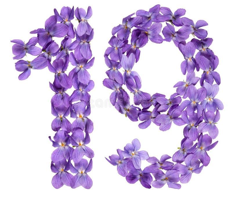 Numeral árabe 19, dezenove, das flores da viola, isoladas sobre fotos de stock