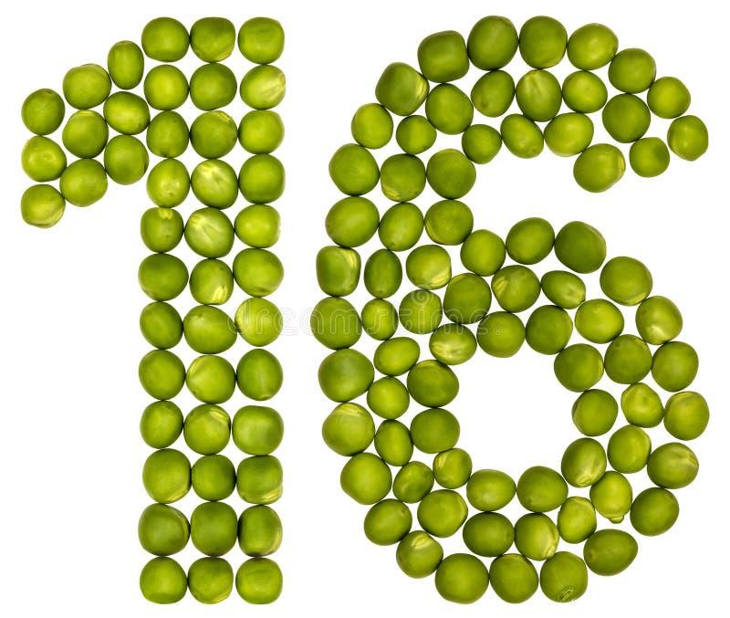 Numeral árabe 16, dezesseis, das ervilhas verdes, isoladas em b branco imagem de stock royalty free