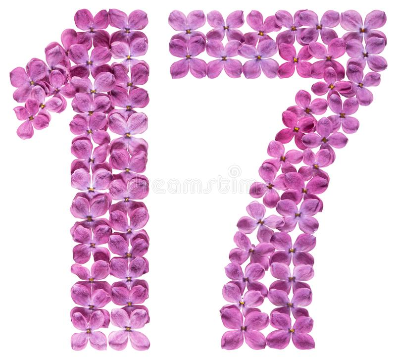 Numeral árabe 17, dezessete, das flores do lilás, isoladas sobre foto de stock royalty free