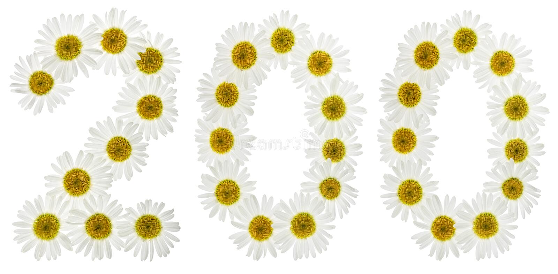 Numeral árabe 200, dois cem, das flores brancas da camomila fotos de stock