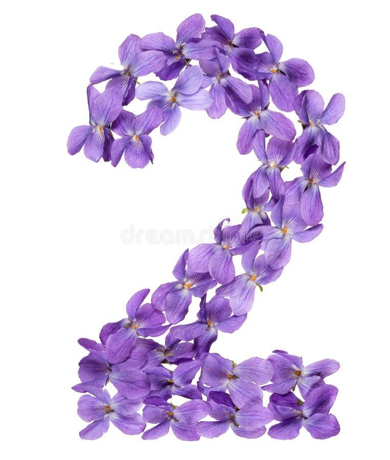 Numeral árabe 2, dois, das flores da viola, isoladas no branco fotografia de stock