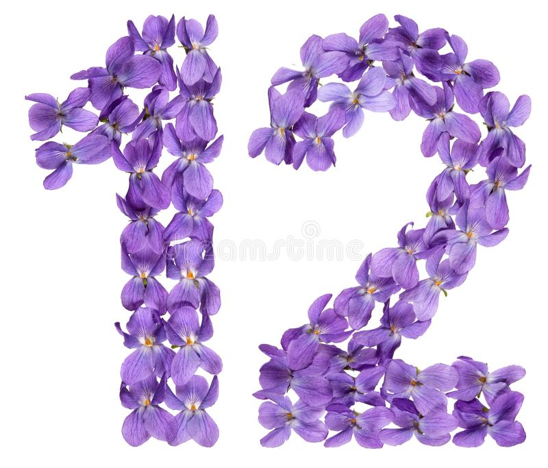 Numeral árabe 12, doze, das flores da viola, isoladas no wh fotos de stock