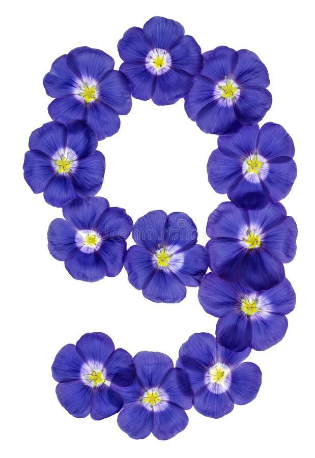Numeral árabe 9, nove, das flores azuis do linho, isoladas em w imagem de stock royalty free