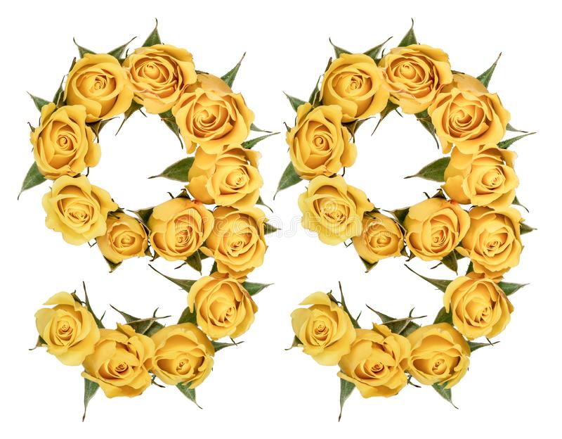 Numeral árabe 99, nove noventas, das flores amarelas da rosa, iso foto de stock