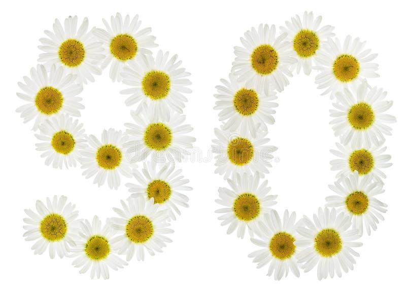 Numeral árabe 90, noventa, das flores brancas da camomila, isolador imagem de stock
