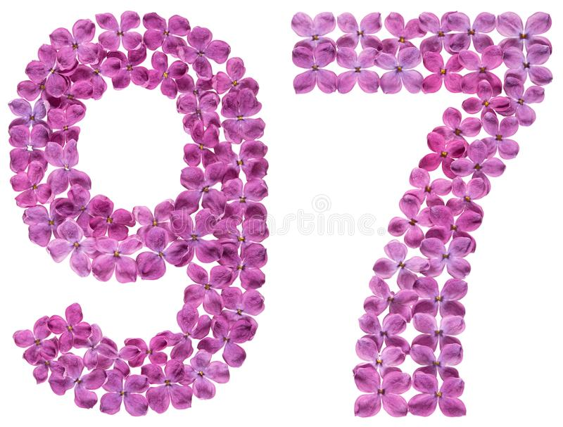 Numeral árabe 97, noventa e sete, das flores do lilás, isoladas fotos de stock