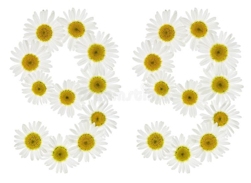 Numeral árabe 99, noventa nove, das flores brancas da camomila, fotos de stock royalty free