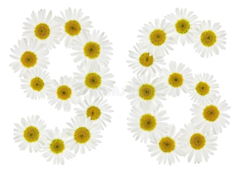Numeral árabe 96, noventa seis, das flores brancas da camomila, foto de stock