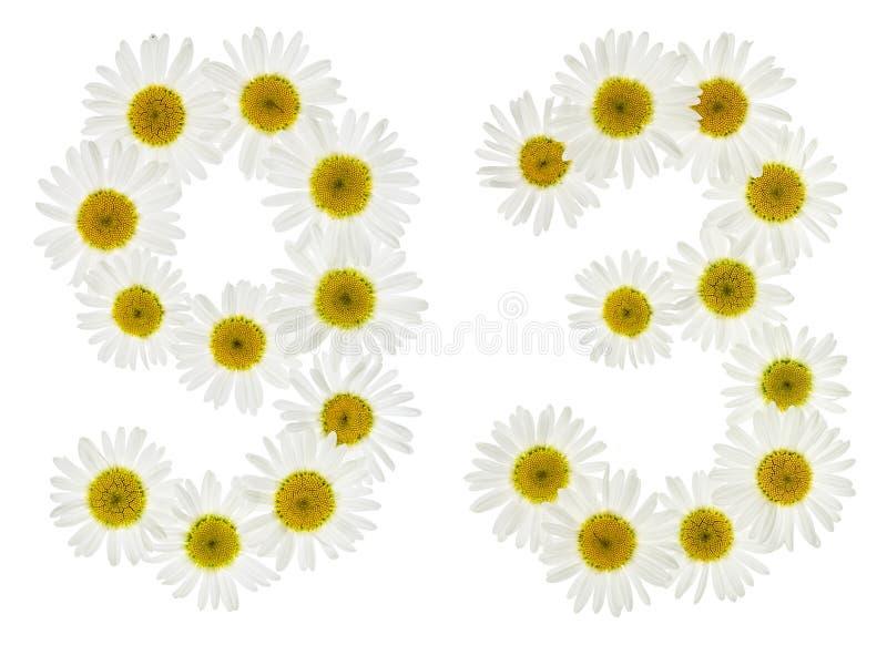 Numeral árabe 93, noventa três, das flores brancas da camomila fotos de stock royalty free