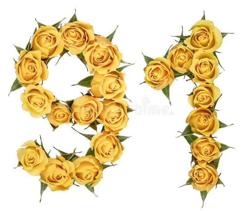 Numeral árabe 91, o noventa, das flores amarelas da rosa, isolador foto de stock