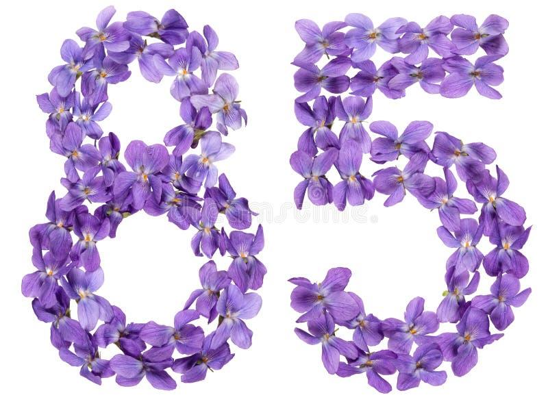 Numeral árabe 85, oitenta e cinco, das flores da viola, isoladas imagens de stock royalty free