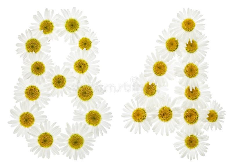 Numeral árabe 84, oitenta e quatro, das flores brancas da camomila, fotos de stock royalty free
